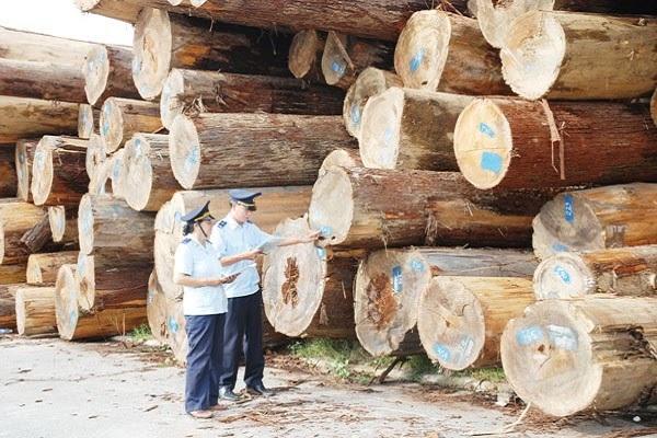 thủ tục xuất khẩu gỗ